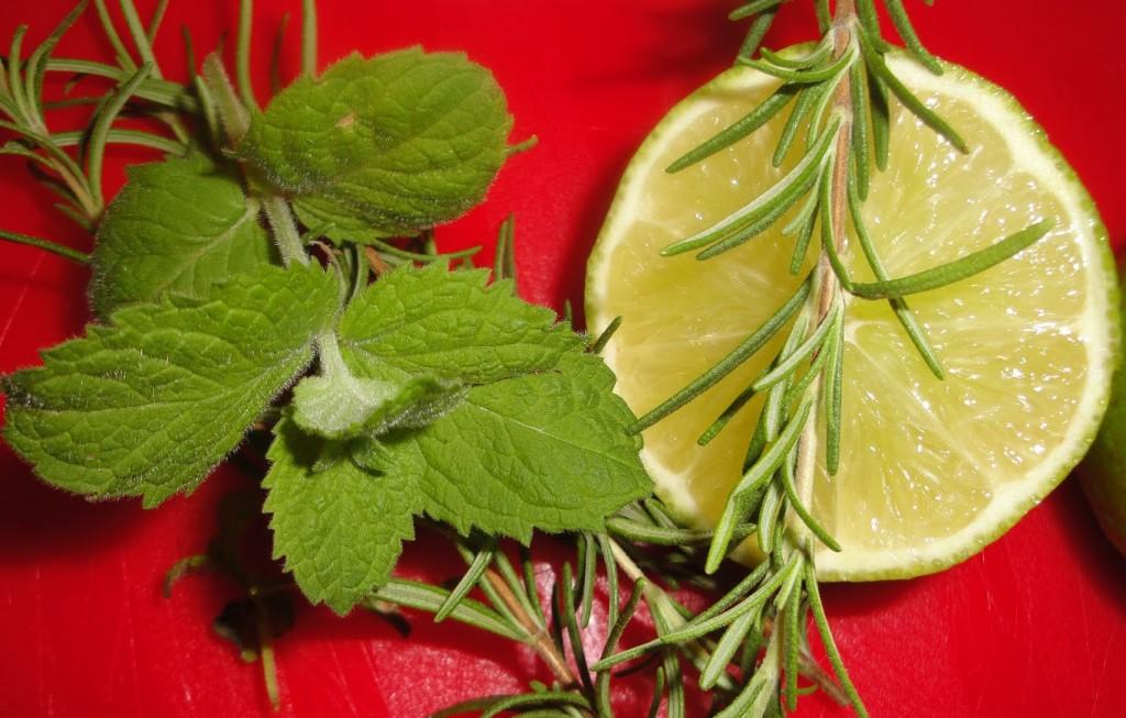 limon-romero-y-menta